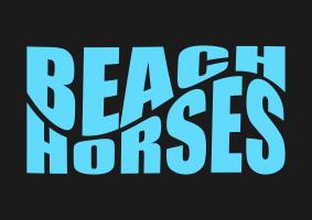 #Horseback Riding on the Beach in FL -  3 tickets left