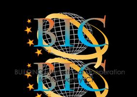 BIC IAG Annual Forum 2013