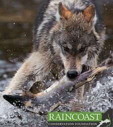 Raincoast Conservation Foundation logo