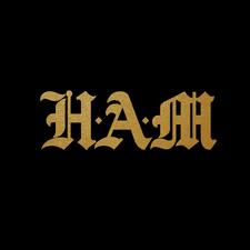 #GoHamHU logo