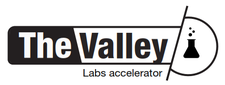 The Valley Labs logo