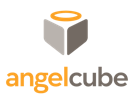 AngelCube: New York Demo Day