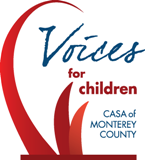 2013 Voices for Children - Annual Friends Luncheon