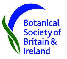 BSBI Meetings & Communications Committee logo