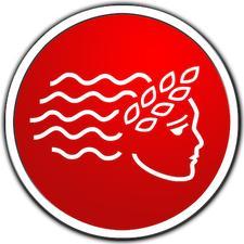 American INSIGHT logo