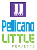 PPL Projects Pte. Limited logo