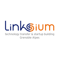Linksium logo