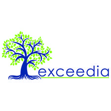 Exceedia Consulting Ltd. logo