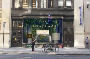 Mannahatta VR: Envisioning Lenapeway
