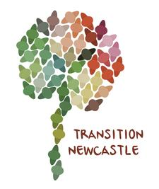 Transition Newcastle  logo