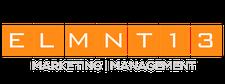 ELMNT13  logo