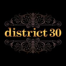 District 30  logo