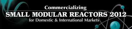 INFOCAST: COMMERCIALIZING SMALL MODULAR REACTORS