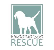 Wagging Dog Rescue  logo