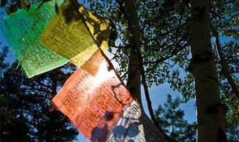 Fall Into Meditation Pt. 2