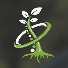 Vital Roots Chiropractic logo