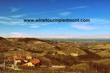 WineTourInPiedmont.com logo