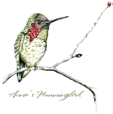 10th Annual Galt Winter Bird Festival logo
