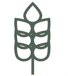 Flourish Media logo