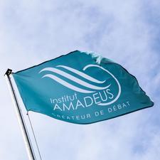 Institut Amadeus logo
