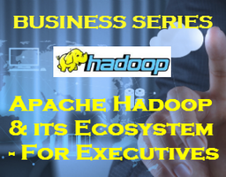 Apache Hadoop & its Ecosystem - For Executives