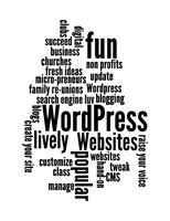 Wordpress Websites 101