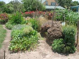 BioIntensive Gardening Part 1 Beyond the Backyard...