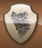 Barolo vs Burgundy/Pinot Noir