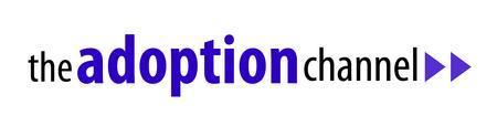Transitioning Children into Adoption Webinar Series...
