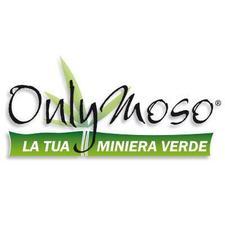 Andrea Menini di Consorzio Bambù Italia - Onlymoso logo