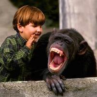 Science-Comedy Improve Blitz