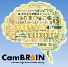 CamBRAIN the Cambridge Neuroscience Society logo