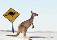 Destino Australia y Nueva Zelandia logo