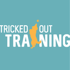 Tricked Out Training logo