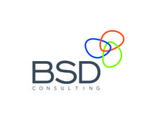 BSD Consulting Germany logo
