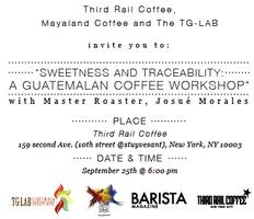 Sweetness and Traceability: A Guatemalan Coffee...