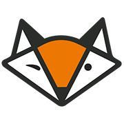 Fin Finaud Consultant logo