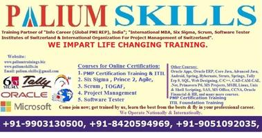 MS Project Classroom Training in Kolkata