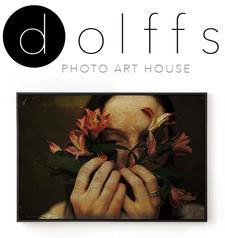 Dolffs Art logo