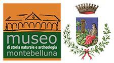 COMUNE DI MONTEBELLUNA- SERVIZIO MUSEO CIVICO logo