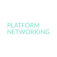 Platform Networking logo