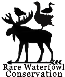 Moose Manor Farms, LLC logo