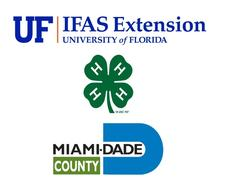 UF/IFAS Miami-Dade County 4-H Youth Development Program logo