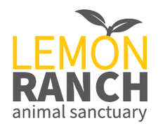 Lemon Ranch Animal Sanctuary logo