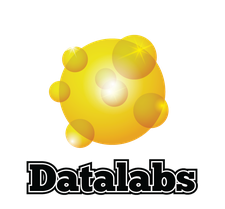 The Datalabs Agency logo