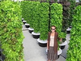WVSU Seminar- Future Growing, LLC - Vertical Garden...