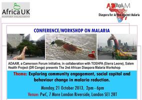 African diaspora and malaria conference/workshop