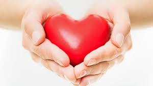 Donate to The Shalini Maripuri Foundation