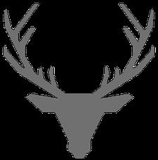 Frey Fitness logo
