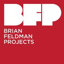 Brian Feldman Projects logo